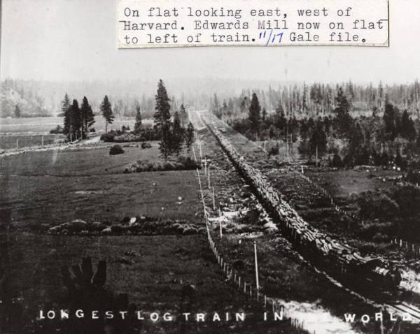Longest Logging Train